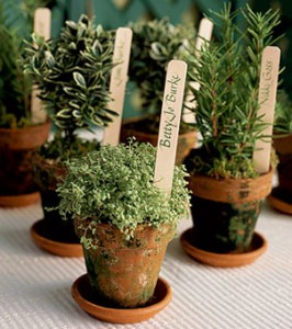 eco wedding favors